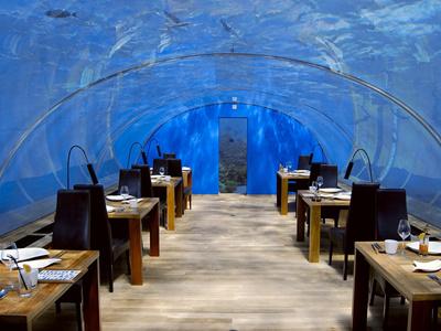 全球最美餐厅:马尔代夫梦幻海底餐厅