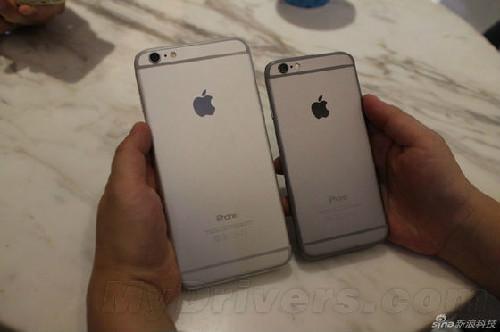 比iPhone6 为什么中国人更爱iPhone 6 Plus?