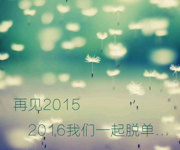 2015最后一天,许下我们共同的愿望,2016一起脱单...